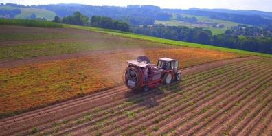 Am 13. Juni 2021 wird über zwei Initiativen abgestimmt, welche die Schweizer Landwirtschaft stark träfen. (Symbolbild)