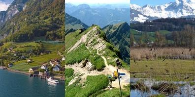See, Bergspitze oder Riet – das Linthgebiet hat viel zu bieten.