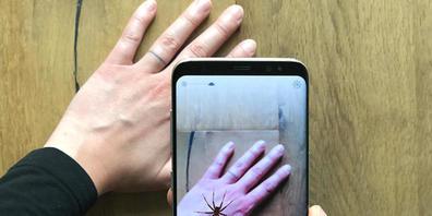 Eine virtuelle Spinne auf der Hand: Diese auf einer Augmented Reality basierende App soll die Hürden für eine Expositionstherapie gegen Spinnenangst senken. (Pressebild)