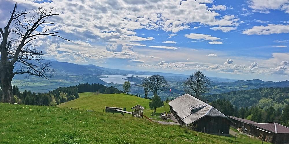 Im gemütlichen Alpbeizli Alp Wielesch gibt es eine schöne Aussicht und währschafte Kost zu geniessen.