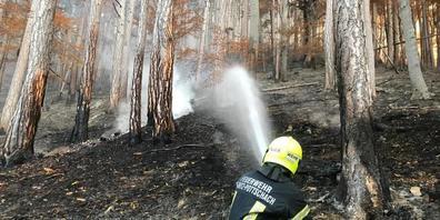 Ein Feuerwehrmann ist bei den Löscharbeiten eines Waldbrandes in Österreich im Einsatz. Foto: Einsatzdoku/APA/dpa