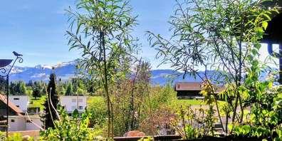 Eine natürliche Idylle auf dem Balkon – Bernadette Gerber beschreibt, wie sie ihr Naturparadies auf der Terrasse zum Leben erweckt hat.