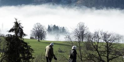 Spazieren war in den Pandemiewochen Anfang Jahr die einzige Fortbewegungsart, die vermehrt ausgeübt wurde. Ansonsten war man in der Schweiz deutlich weniger unterwegs: Im Auto gingen die zurückgelegten Distanzen um ein Viertel, im ÖV sogar um die ...