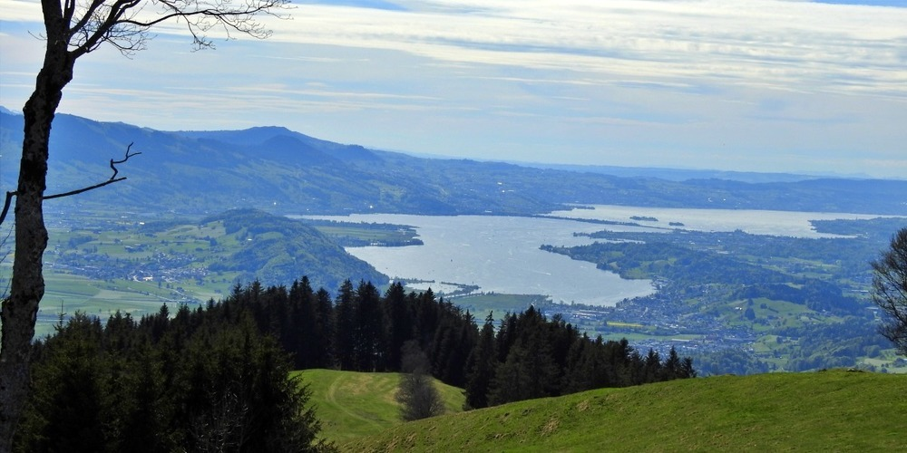 Blick von der Alp Wielesch in Richtung Obersee.