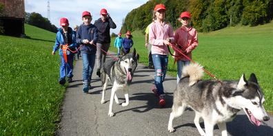 Beliebt: Der Husky-Kurs vom 15. Juli ist jedes Jahr ausgebucht.