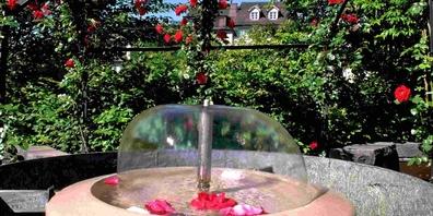 Erfahren Sie, welche Geschichten und unbekannten Details hinter den 70 Brunnen in Rapperswil-Jona stecken.