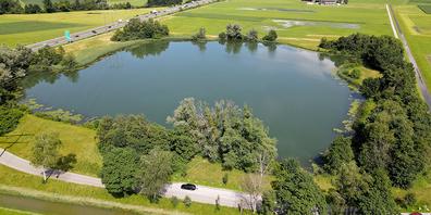 Das Gebiet um das Laichseeli ist ein Naherholungsgebiet für die Bevölkerung und ein wichtiger Lebensraum für die Tierwelt, vor allem für Amphibien.