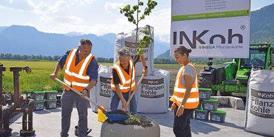 Gion Willi, Andreas Zindel und Miriam Marxer haben am Mittwoch in Maienfeld einen Baum gepflanzt.