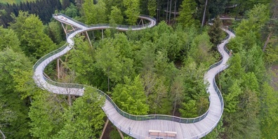 Auch der Baumwipfelpfad Neckertal, Mogelsberg, ist nominiert.