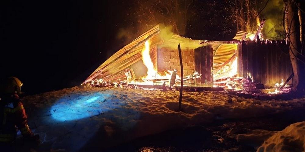 Die Feuerwehr konnte ein Ausbreiten des Feuers auf den nahen Wald verhindern