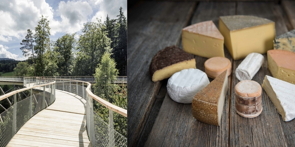 Baumwipfelpfad Neckertal und Käse aus dem Toggenburg.