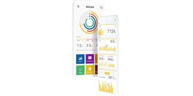 Liefert Live-Daten bequem aufs Smartphone: Die ROOCKiE-App.
