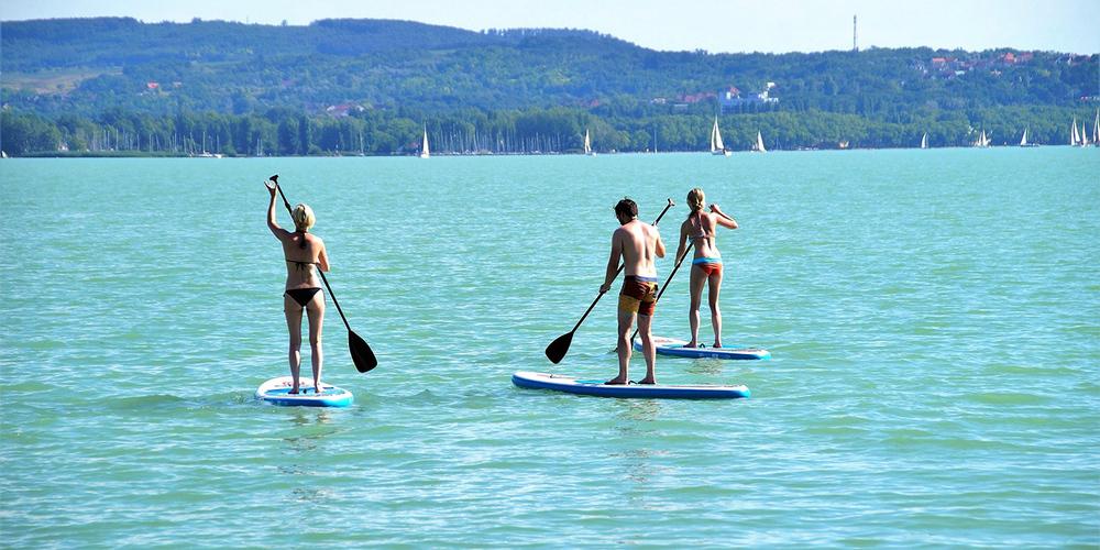 Vier Verhaltensweisen sorgen für ein friedliches Nebeneinander von Wassersportlern und Wildtieren.