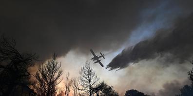 Ein Flugzeug wirft über einem Waldbrand nördlich von Athen Löschwasser ab. Foto: Michael Varaklas/AP/dpa