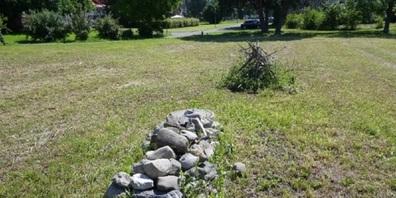 Stein- und Asthaufen dienen dem Hermelin als Verstecke. Von hier geht's auf zur Mäusejagd.